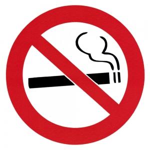 "No Smoking - Small Bumper Sticker / Decal (3.5"" Circular)"