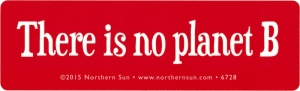 "There Is No Planet B - Small Bumper Sticker / Decal (5"" X 1.5"")"