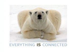 Everthing IS Connected - Postcard