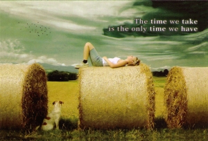 The Time We Take Is The Only Time We Have - Postcard