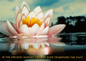 In the Present Moment You May Even Transform the Past - Postcard