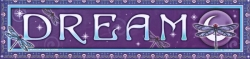 "Dream - Bumper Sticker / Decal (11"" X 2.75"")"
