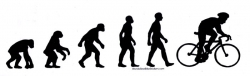 "Bike Evolution - Bumper Sticker / Decal (11.5"" X 3.5"")"