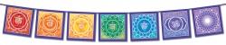 Rainbow Chakra String - Flag