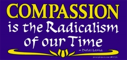 Compassion is the Radicalism of Our Time - Dalai Lama - Bumper Sticker / Decal