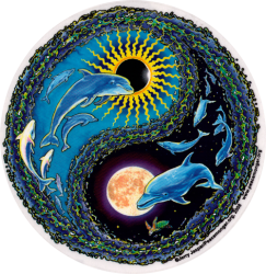 Dolphin Flight Yin Yang - Window Sticker
