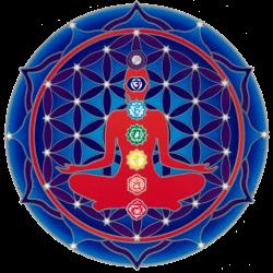 "Chakra Mandala - Window Sticker / Decal (5.5"" Circular)"