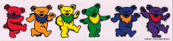 "Rainbow Dancing Bear - Grateful Dead - Window Sticker / Decal (11.5"" X 2.5"")"