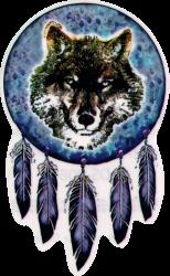 "Native Wolf - Window Sticker / Decal (3.5"" X 5.5"")"