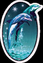 "Twin Dolphins - Window Sticker / Decal (4"" X 6"" Oval)"