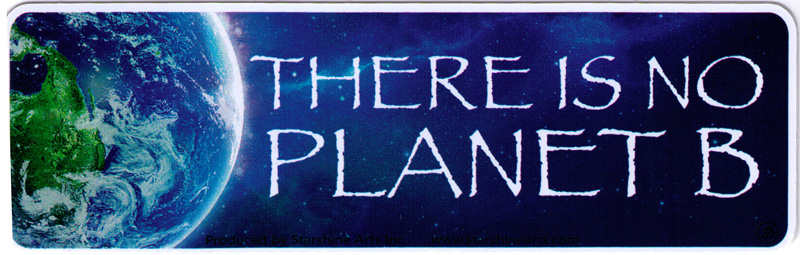 there is no planet b small bumper sticker decal 5 5 x peace resource project. Black Bedroom Furniture Sets. Home Design Ideas