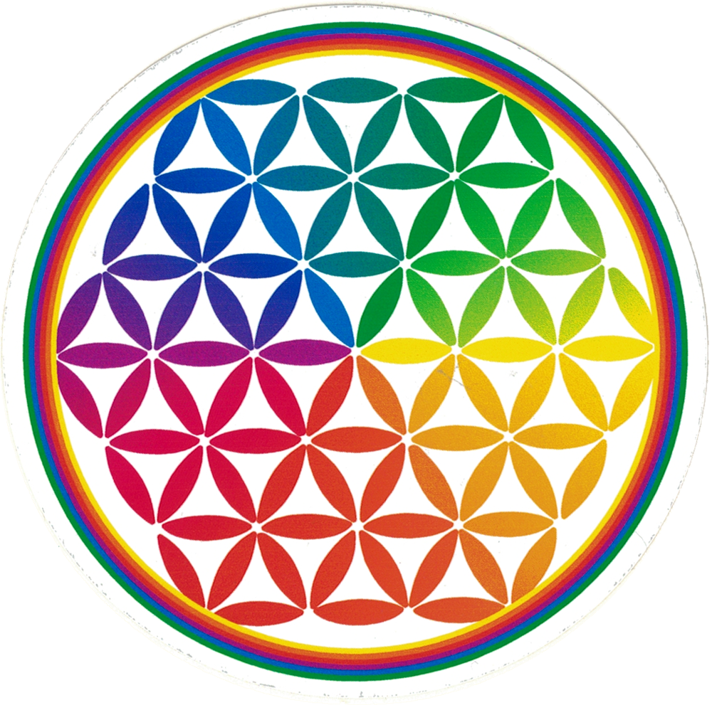 Flower Of Life Small Bumper Sticker Decal 3 5