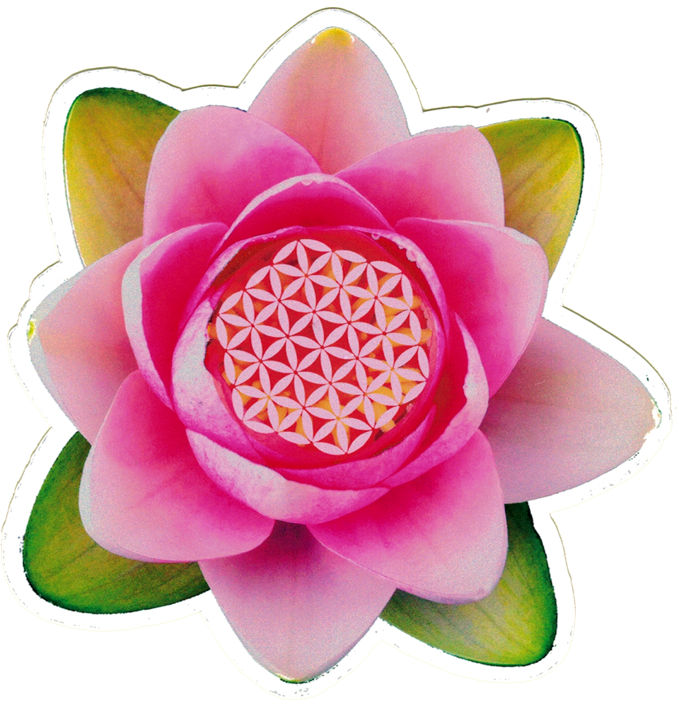 Lotus Flower Small Bumper Sticker Decal 45 X 45 Peace