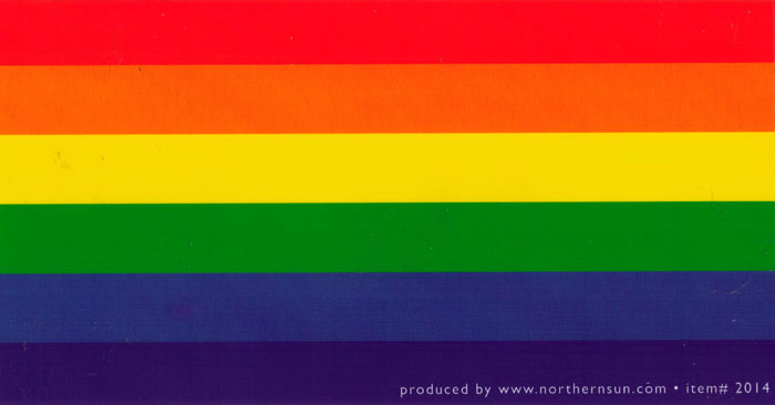 Rainbow flag diversity small bumper sticker decal 5 75 x 3