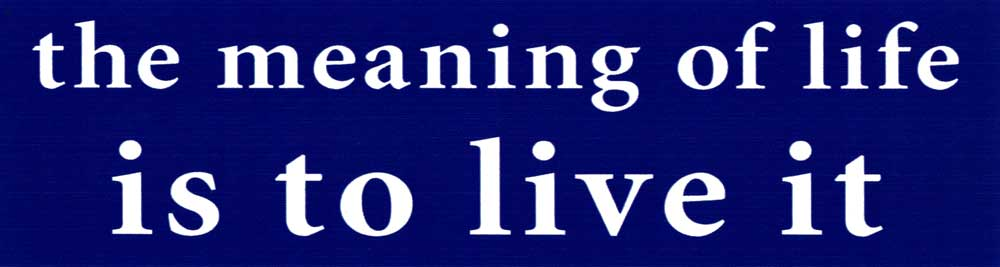 The Meaning of Life is to Live It - Small Bumper Sticker / Decal