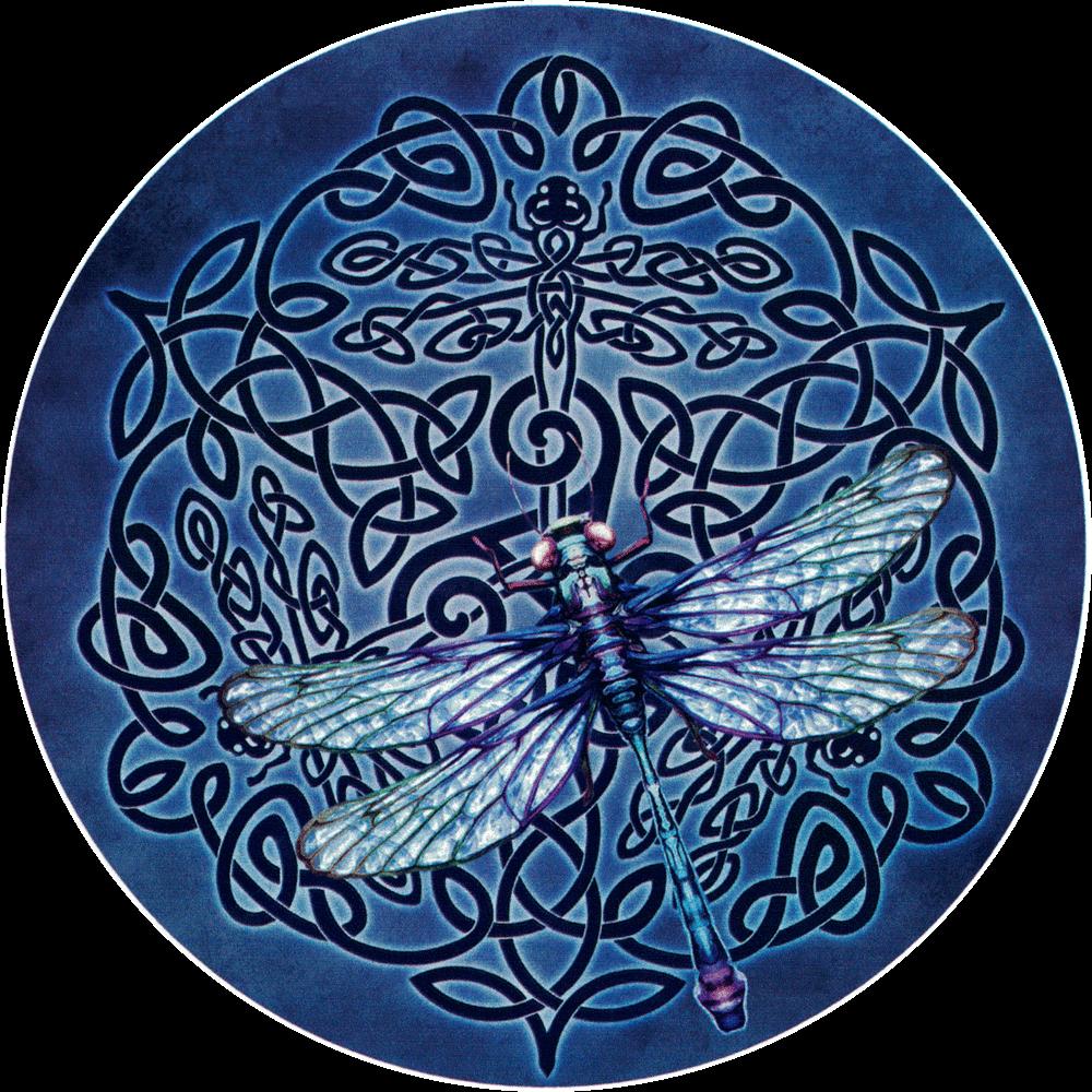 Celtic Dragonfly Bumper Sticker Decal 4 5 Quot Circular
