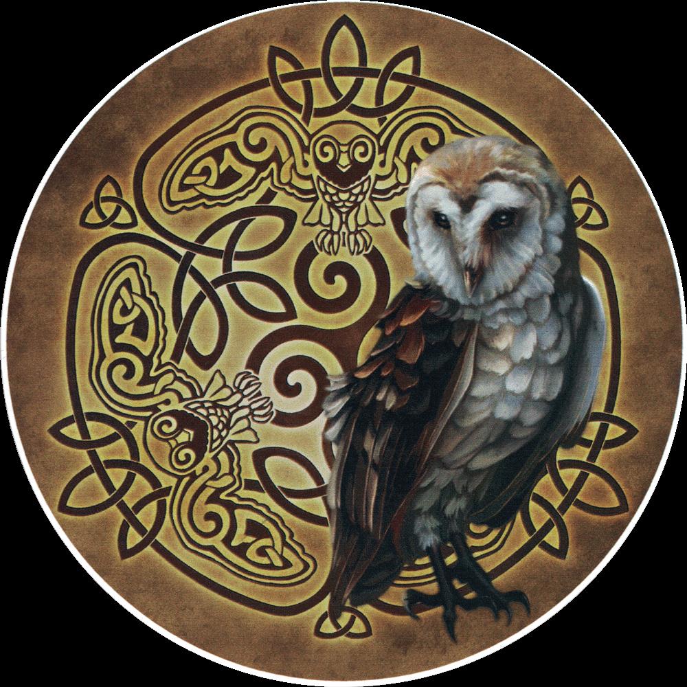 Celtic Owl Bumper Sticker Decal 4 5 Quot Circular