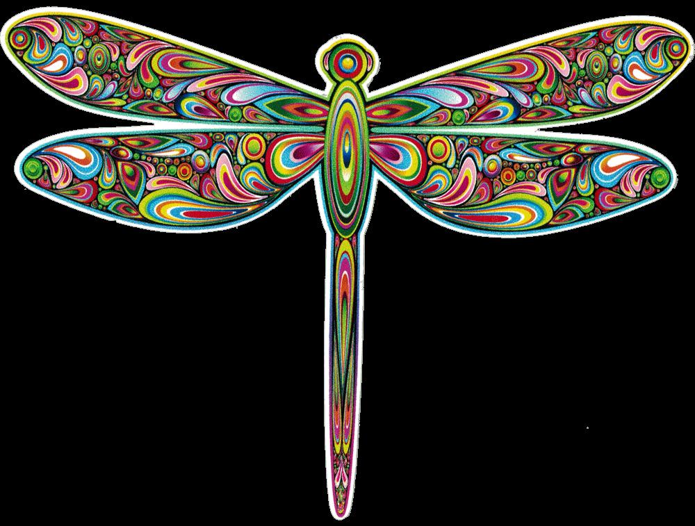dragonfly   decal  5 u0026quot  x 4 u0026quot
