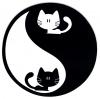 "Yin Yang Kittens - Small Bumper Sticker / Decal (3"" circular)"