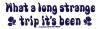 What A Long Strange Trip It's Been - Grateful Dead - Small Bumper Sticker