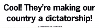 LS13 - Cool! They're Making Our Country a Dictatorship! - Bumper Sticker / Decal