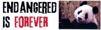 "Endangered is Forever - Bumper Sticker / Decal (3"" x 10"")"