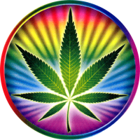 "Psychedelic Pot Leaf - Bumper Sticker / Decal (4"" X 4"")"