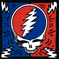 "Grateful Dead Steal Your Face Bolts - Bumper Sticker / Decal (4"" X 4"")"