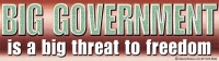 "Big Government is a Big Threat to Freedom - Bumper Sticker / Decal (10.5"" X 3"")"