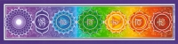 "Chakra - Bumper Sticker / Decal (11"" X 2.75"")"