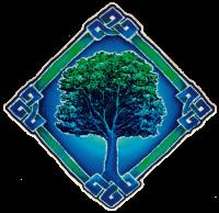 "Celtic Tree - Window Sticker / Decal (6"" X 6"")"